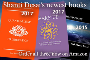Order Shanti's new books, Quantum Leap to Liberation, Wake Up and Zero Is Infinity on Amazon