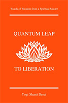 Quantum Leap to Liberation Book Cover